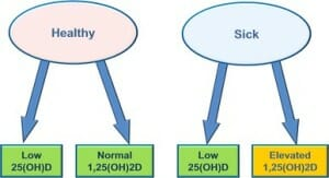 healthy and low Vit D image